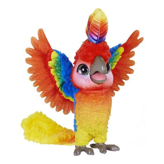 Show-Coco mon perroquet star